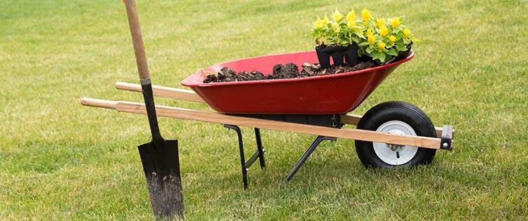 devis gratuit création de jardin Montluçon